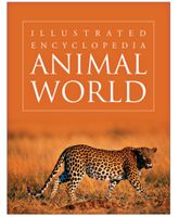 Animal World - English