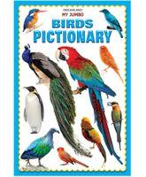 Dreamland My Jumbo Birds Pictionary - English
