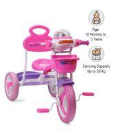 Babyhug Funride Tricycle - Pink