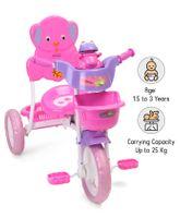 Babyhug Musical Froggy Tricycle - Pink