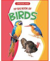 My Big Book Of Birds