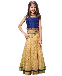 Peek-A-Boo Aari Pita Work Lehenga Choli - Blue & Golden