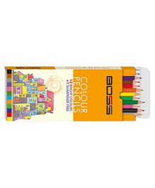 Boss Color Pencil Regular - Pack of 12