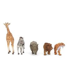 Collecta Wild Life Window Figured Boxed Set - Pack Of 5