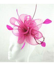 Angel Closet Feather Fascinator Clip - Pink