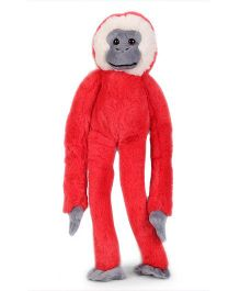 Keel Colorful Monkey Soft Toy Red - 36 cm