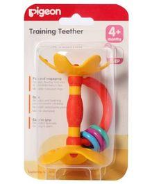 Pigeon -  Training Teether Step 1