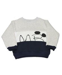 Kiwi Full Sleeves Sweatshirt Mr Print - Grey Blue