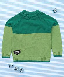 Bee Born Attractive Full Sleeves Sweater - Green