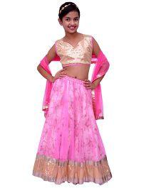 Kilkari Kali Ghagra With Sequinned Crop Choli & Matching Dupatta - Pink
