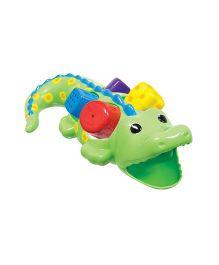Sassy Alligator Sorter - Multicolor
