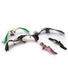 Playmate Bird Set Multicolor - 6 Pieces
