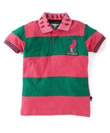 New York Polo Academy Half Sleeves Polo Neck T-Shirt - Pink & Green