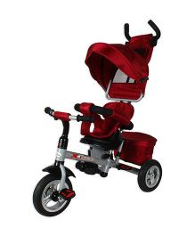 Toyhouse Luxury Tricycle With Canopy - Red