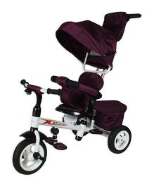 Toyhouse Luxury Tricycle With Canopy - Purple