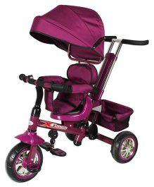 Toyhouse Luxury Tricycle B32-2 - Purple