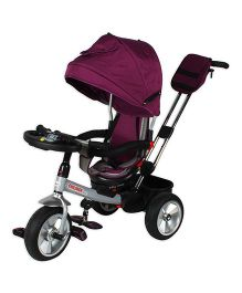 Toyhouse Kids Tricycle With Canopy - Purple Black