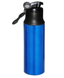 Home Union Ruby Stainless Steel Sports Bottle - Blue