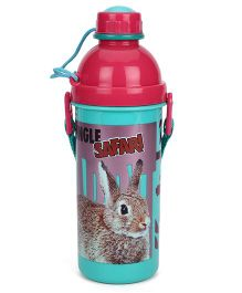 Jewel Amazon Big Rabbit Print Water Bottle Pink & Green - 525 ml