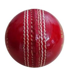 Wasan Leather Cricket Ball - Red
