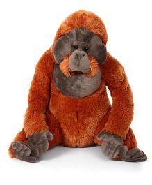 Wild Republic Oranguttan Soft Toy  - Brown