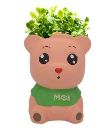 Buddyboo Teddy Grass On Head Plant Pot - Green