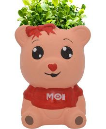 Buddyboo Teddy Grass On Head Plant Pot - Red