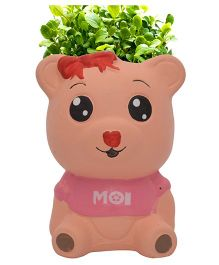 Buddyboo Teddy Grass On Head Plant Pot - Pink
