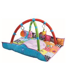 Taf Toys Newborn Play Gym - Multi Color