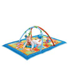 Taf Toys 3 in 1 Curiosity Gym - Multi Color