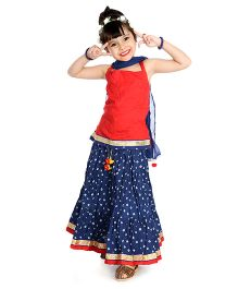 Little Pockets Store Set Of Printed Lehenga & Contrast Choli - Red