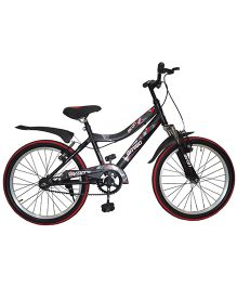 Avon Amigo Bicycle - Grey
