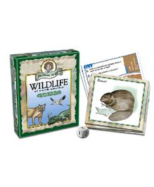 OutSet Media Prof Noggin's Wildlife of North America Card Game - Green