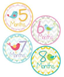 Lollipop Labels Bird Design Monthly Sticker With Chevron Pattern - 12 Stickers