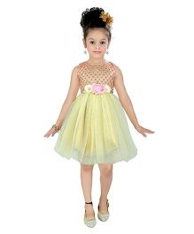 Littleopia Sleeveless Party Wear Dress Embellished With Floral Applique - Yellow