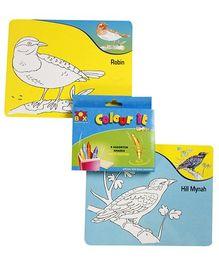 Toysbox - Birds Colour It Wipe It