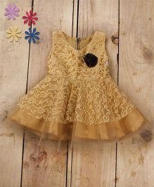 Tiny Toddler Princess Cut Lace Dress With Corsage - Gold