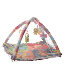 NHR Happy Play Gym - Multicolor