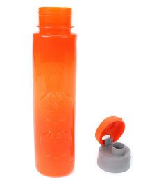 Doraemon Water Bottle Orange - 500 ml