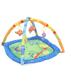 Smart Picks Play Gym Printed - Multicolor