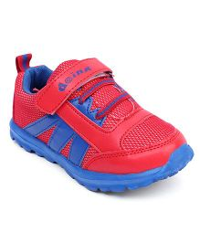 Doink Sneakers Sports Shoes With Velcro Closure - Red & Blue