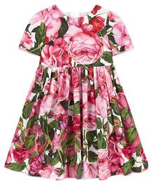 Pre Order - Awabox Floral Print Dress - Pink