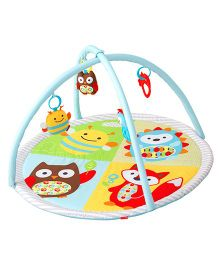 Skip Hop Explore & More Funscape Activity Gym Play Mat