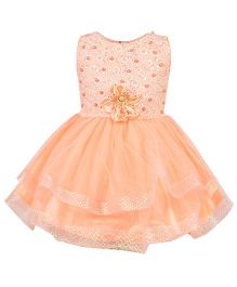 Aarika Party Wear Tutu Dress With Flower Embellished - Peach