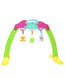 Emob Baby Portable Play Gym Frame With Rattle Toys - Multicolor