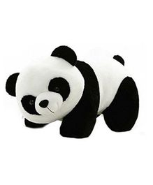 Deals India Panda Soft Toy White Black - 26 cm