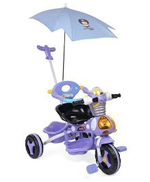 Tricycle With Canopy and Parent Push Handle - Purple