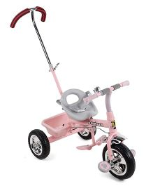 Baby Tricycle With Push Handle - Pink