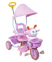 Tricycle With Canopy Music And Push Handle - Pink & Light Purple