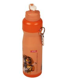 Madagascar Icy Cool Water Bottle Orange - 750 ml